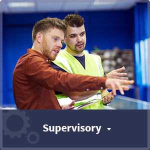 Employment and Job Categories Offered Through Labor Staffing Solutions - supervisory